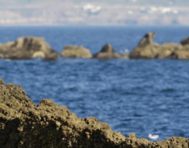 Lo mejor para tu boda en Baja California