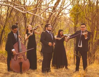 Bella Strings Cuarteto de Cuerdas