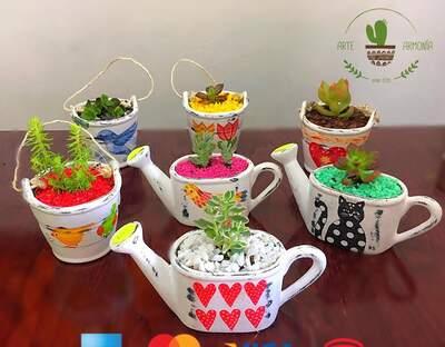 Arte y Armonía - mini jardínes