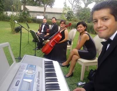 Violines Elias